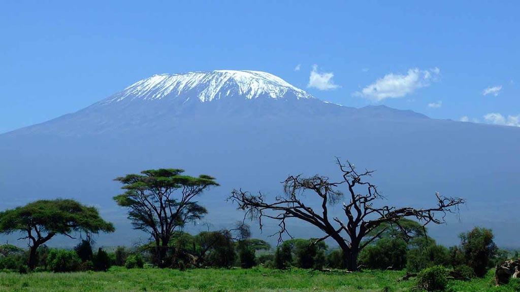 kilimanjaro experiences